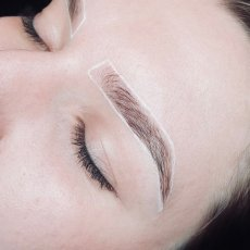 White Brow Marker