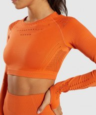 Mesh Crop Top, Orange